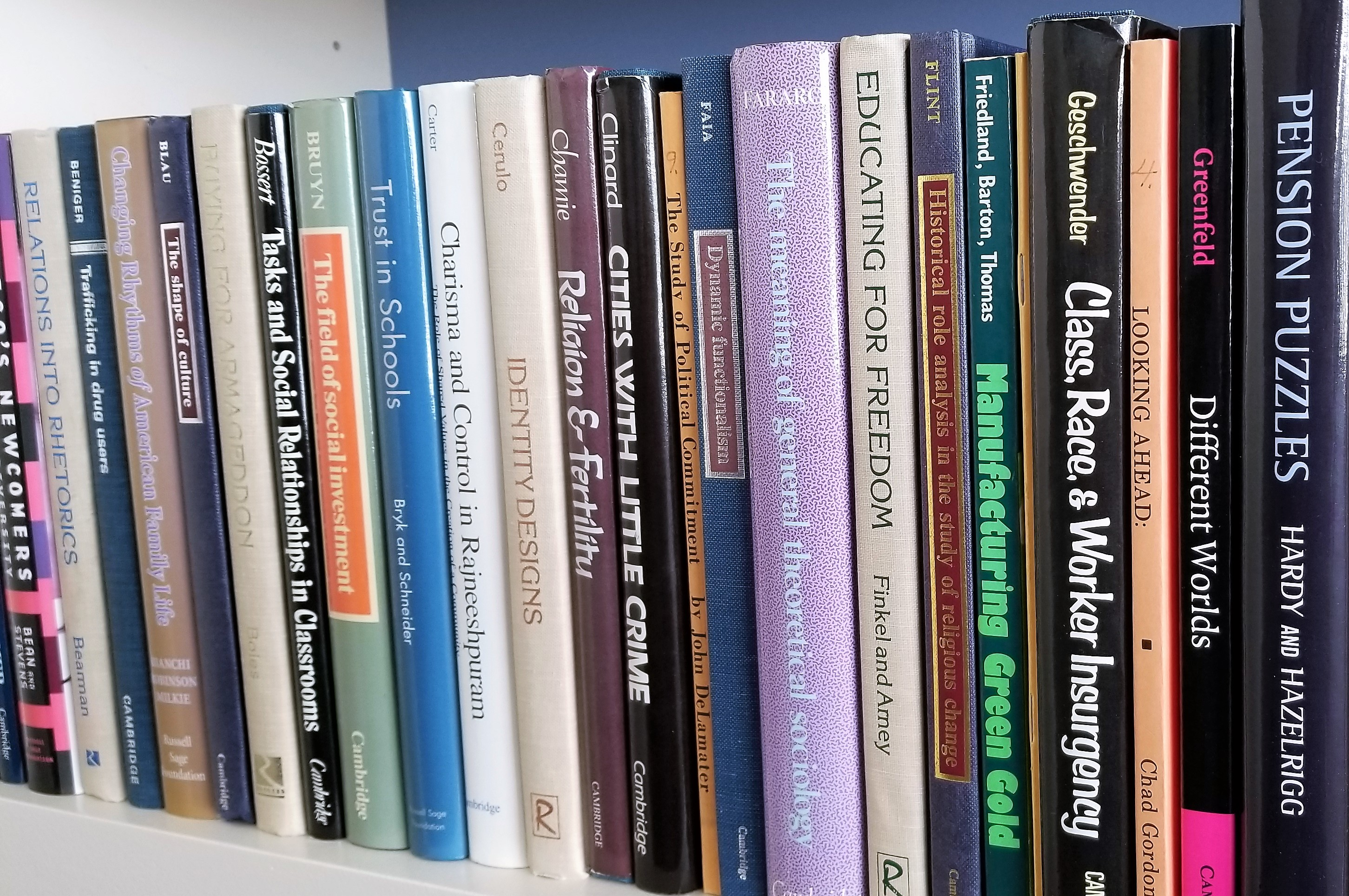 Photo of the spines of selected Rose Series in Sociology volumes.