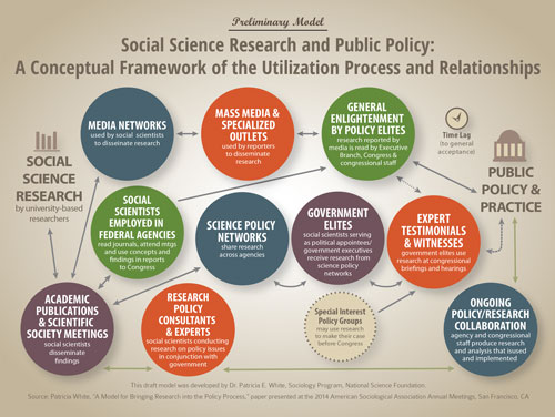 social policy analysis paper
