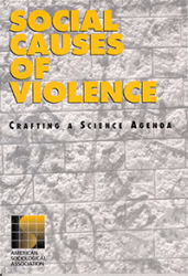 Social Causes of Violence