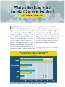 Bachelors in Sociology Cover